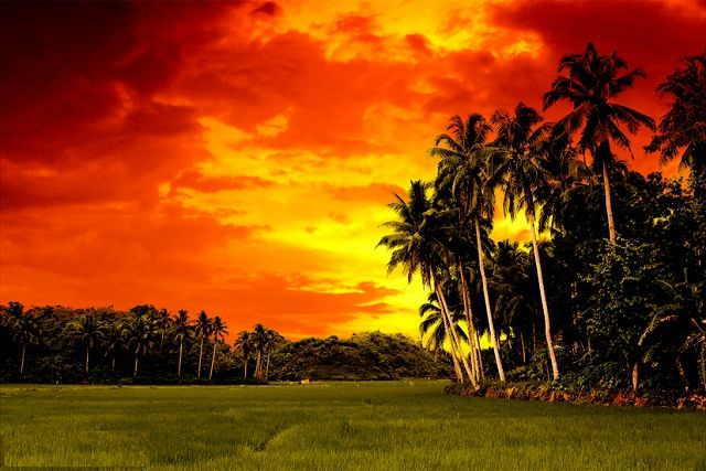 Image result for filipino sunset