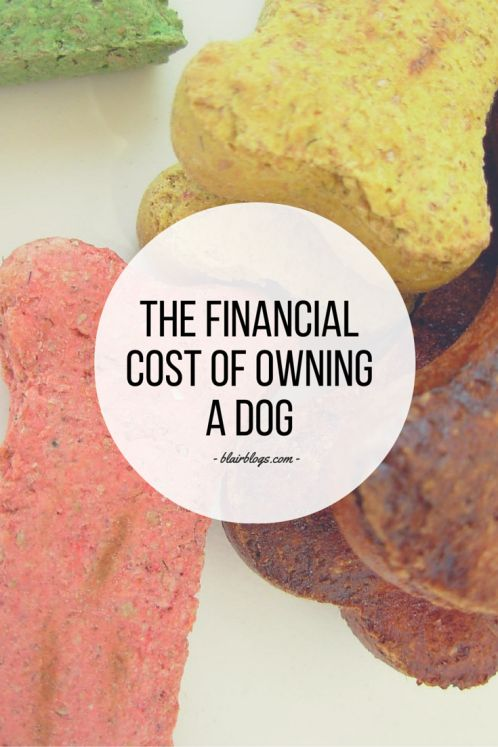 This blog post breaks down every conceivable expense you could incur as a dog owner--it's a must-read for anyone who's considering adding a pup to her family! | The Financial Cost of Owning a Dog | Blair Blogs
