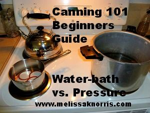 Canning 101 Beginners Guide to canning. Difference between Water-bath and Pressure canning, plus tips for success