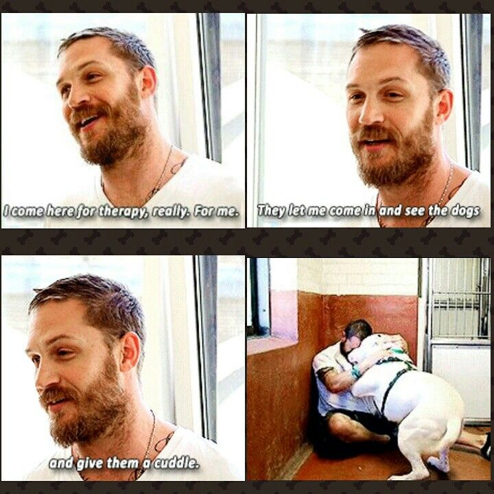 Paul o'gradys for the love of dogs ITV - Tom hardy visits battersea dogs home