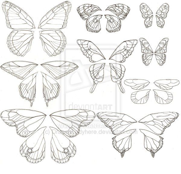 Upon Butterfly Wings: Patterns and Guide