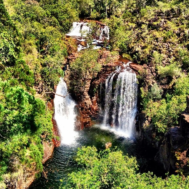 Our last swimming stop on my G Adventures tour: Florence Falls. Paradise found! #ntaustralia #gadv