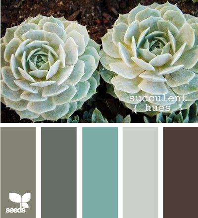Soft teal, brown, and grey color scheme. green brown grey aqua sea foam...absolutely love the colors here, mixed with a little ivory/white! I'm thinking about aqua, light gray, brown and ivory/white.