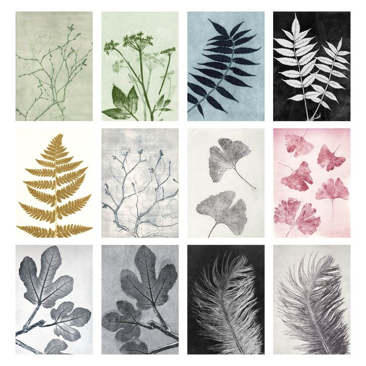 Botanik i smukke, sarte toner er indbegrebet af Pernille Folcarellis forårskollektion – se med her.
