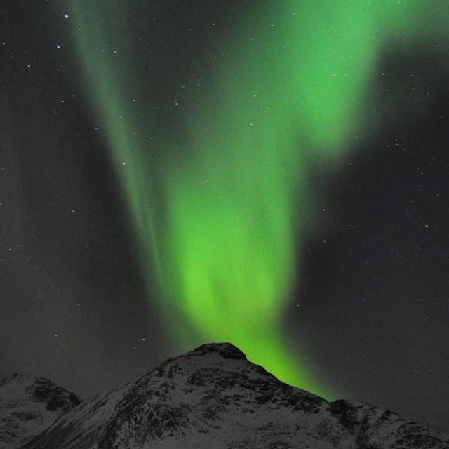 We had a beautiful aurora tour with Marianne from MHOEACT in Tromsø, Norway. We highly recommend her as a guide as she is VERY passionat about northern lights and photography #aurora #northernlights #nordlys #nordic #ignorway #ig_nordnorge #kvaløya #tromsø #troms #tromsvik #norway #visittromso #visitnorway #igscandinavia #tubaabintransit #ilovenorway #bestofscandinavia #bestofnorway #norges_fotogalleri #topåtur #twodanesontour #danskerejseblogs #turengårtil #lonelyplanet…