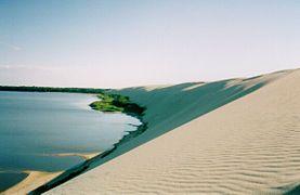 Lituania - Dunas de arena en el istmo de Curlandia (Patrimonio de la Humanidad).