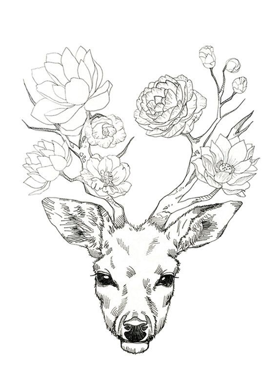 Er mag Essen Blumen in den nebligen Wald.  Die Blume, die er isst blüht wieder auf seinem Geweih.    Er genießt es, im Gespräch mit einer alten