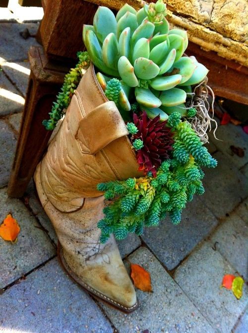 cute gardening idea! san juan capistrano, los rios district.