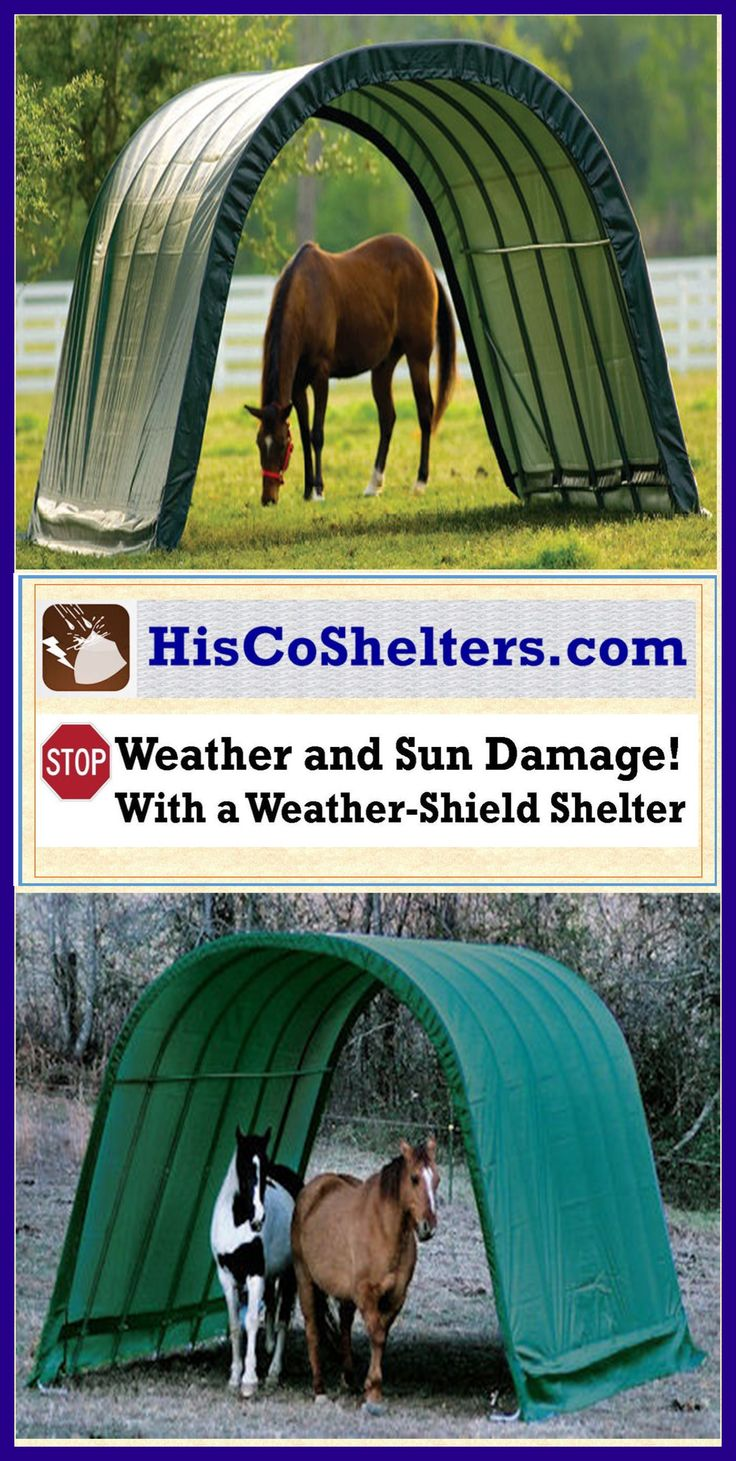 way structures yet an attractive shelter provide horse offers and are shed shelters safe horizon year tan secure kits our to cost round wooden low that in sheds run barns