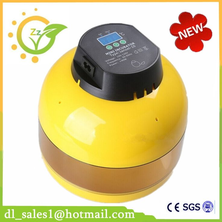 (36.86$)  Watch more here - http://aif4f.worlditems.win/all/product.php?id=32769652334 - best price mini chicken incubator machine mini egg incubator 10 eggs chicken incubator for sale