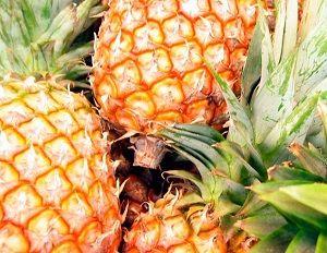 O abacaxi é um fruto muito medicinal.Ele é rico em nutrientes, como a vitamina A, B1, B6, C, ferro, magnésio e fibras.