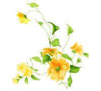 Lenagold - Клипарт - Оранжевые цветы 6