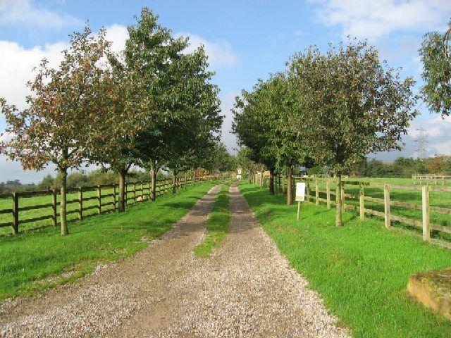 44 Best Farm Driveways Images On Pinterest Driveway