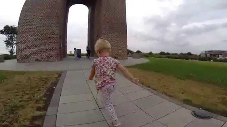Grenen, Aarhus, Ejer Bavnehøj, Trelde Næs