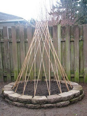 What I modeled my bean teepee off of