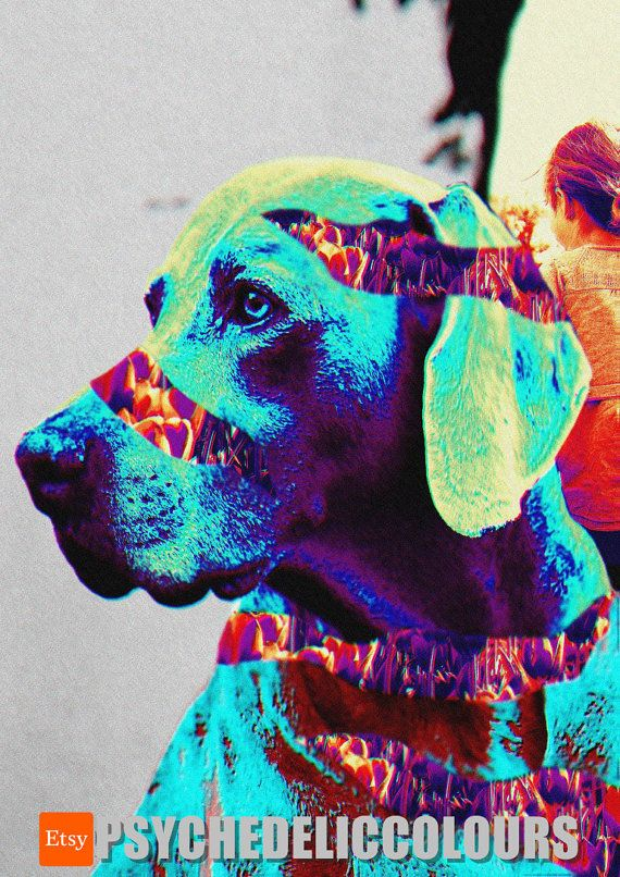 Nostalgic Broken Dog - Printable Psychedelic Poster!