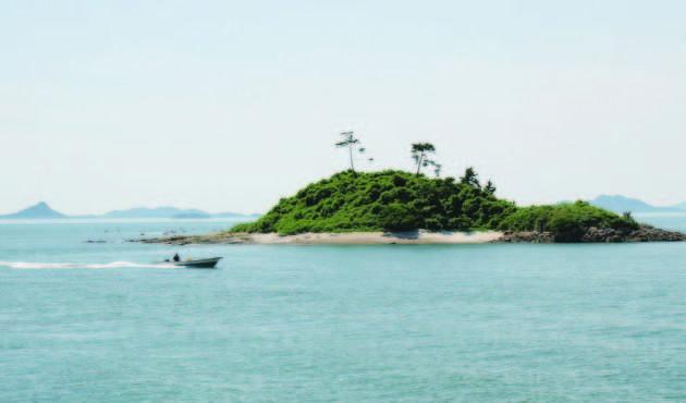 교보생명블로그 :: 안가보면 후회 할 아름다운 섬여행지 Best 5 !