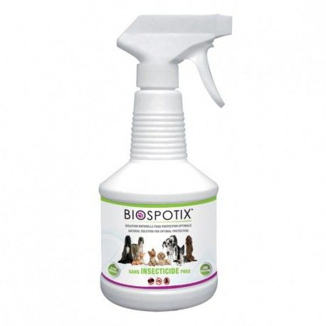 25 best ideas about anti puce chien on anti puce naturel chien chat and sant 233 des