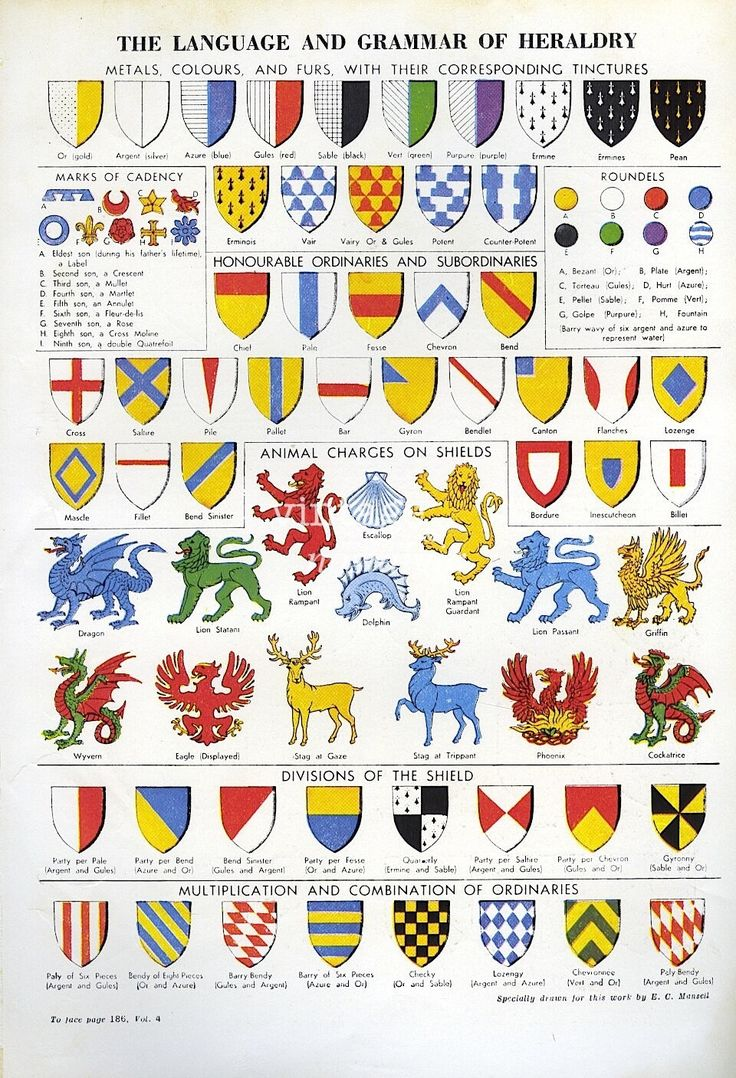 Crests, Heraldry 1950s vintage book plate - colorful crests, shields, heraldry, family crests - boy bedroom decor. $10.95, via Etsy.
