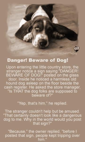 Beware of the Dog!!