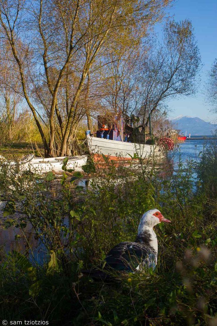 fishing boat, agrinio