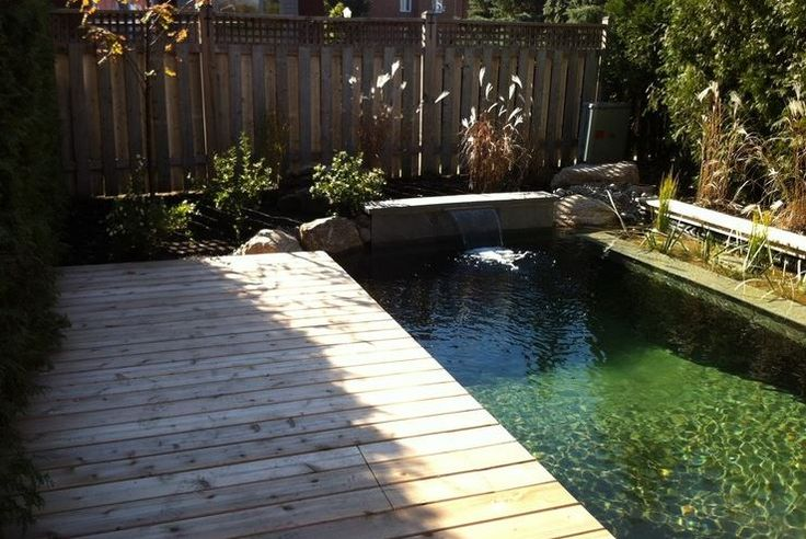 Natural Swimming Pools: More Beauty, No Chemicals - Outdoor Page