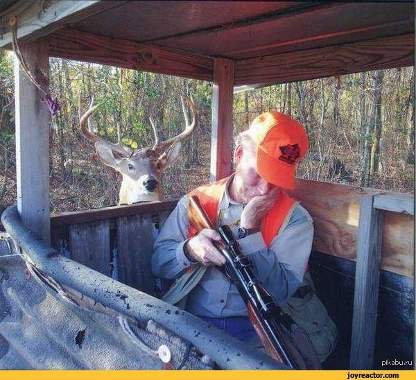 Cartoon Pictures Of Sleeping Hunter With Deer Sleeping