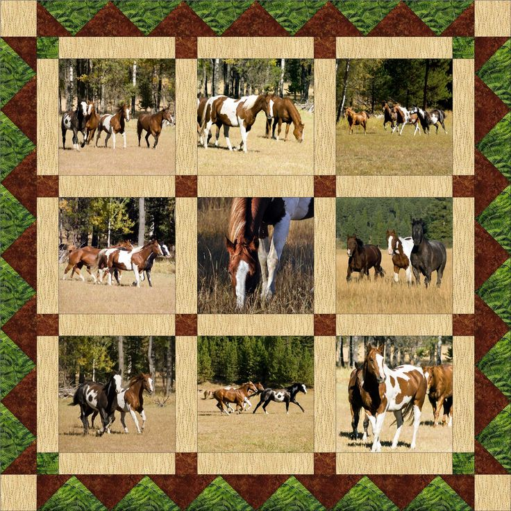 19 Best Western Quilts And Blocks Images On Pinterest Quilt Blocks