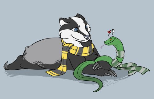 This Slytherin may have a crush on a certain miss Hufflebadger