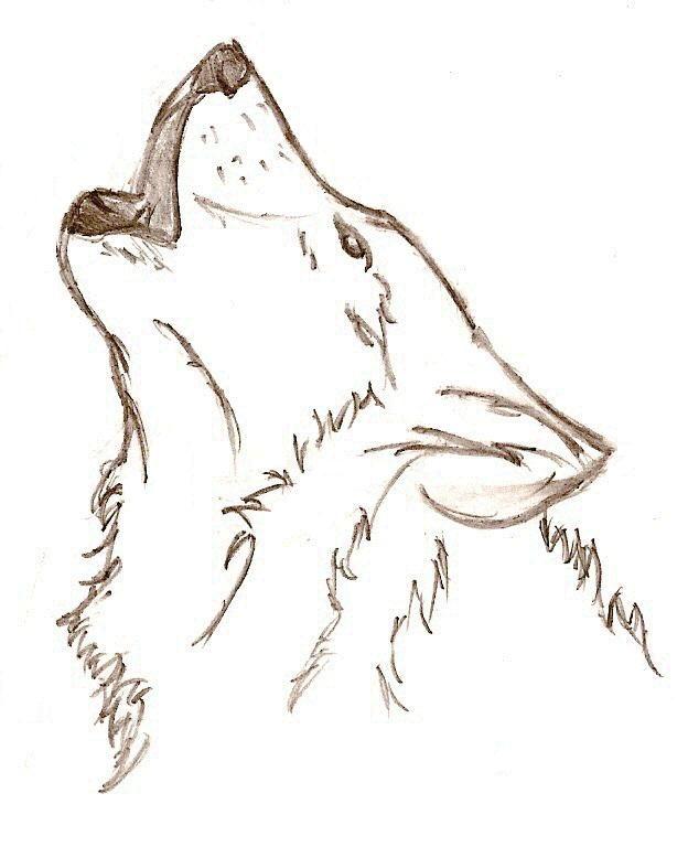 Картинки волков воющих на луну карандашные работы