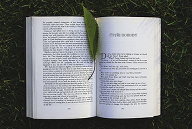 8 nejdůležitějších myšlenek z knihy Čtyři dohody