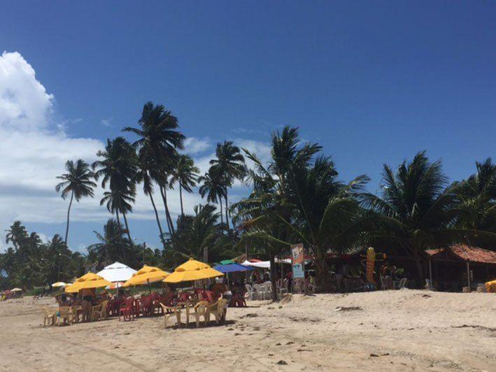 Tudo sobre Maragogi e as praias vizinhas do litoral Norte de Alagoas. As que vale a pena conhecer, como ir, onde comer e muito mais.