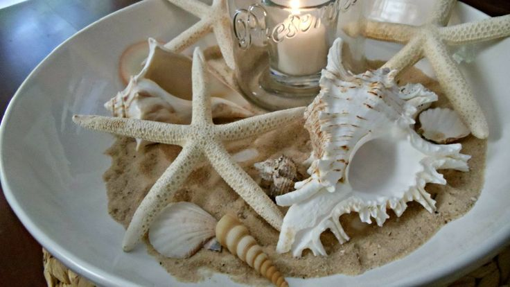 480 best images about seashells on pinterest seaside - Things to do with seashells ...