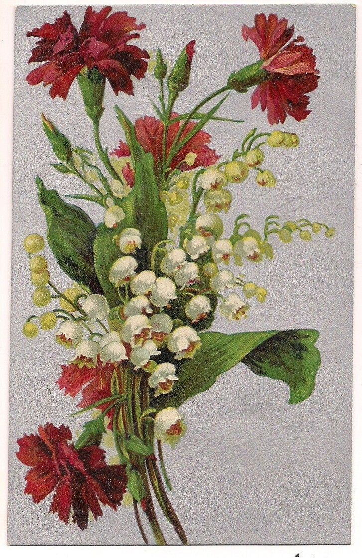 362 best dreams of lily of the valley images on pinterest lilies simple but beautiful carnation bouquet flowers lily vintage postcard picclick izmirmasajfo
