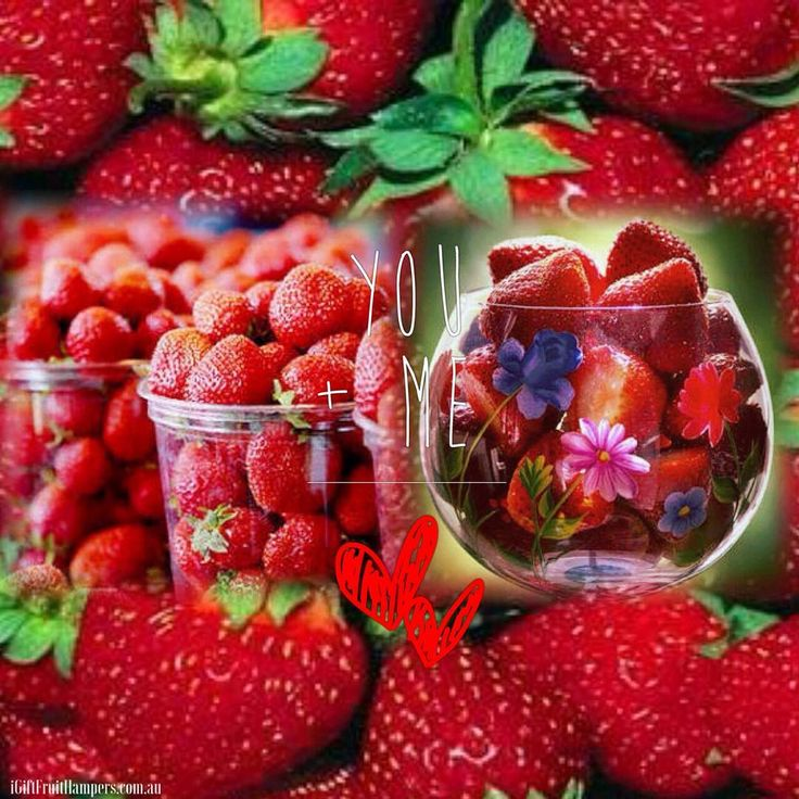 Amazing Strawberry Facts  Did you know? #strawberry #strawberries #fruit #kiss #strawberrykisses #strawberrylove #strawberry🍓 #fruitfacts #fruity #nutribullet #healthyfood #healthychoice