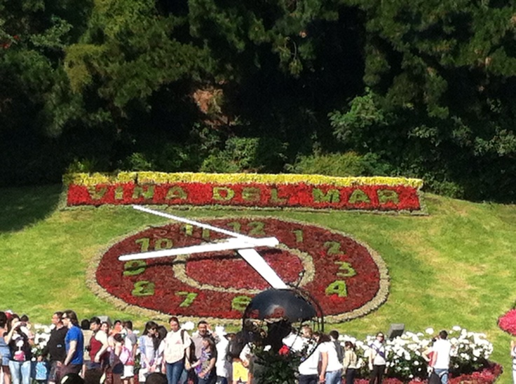 The flower clock in Vina Del Mar Chile  What you can smell Flowers