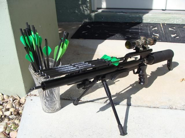 Crossbow Rifle