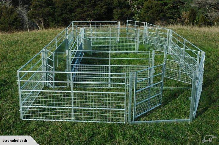 Sheep Yard Panels Gates And Drafting Race Trade Me