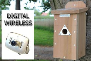 Digital wireless discovery nest box camera