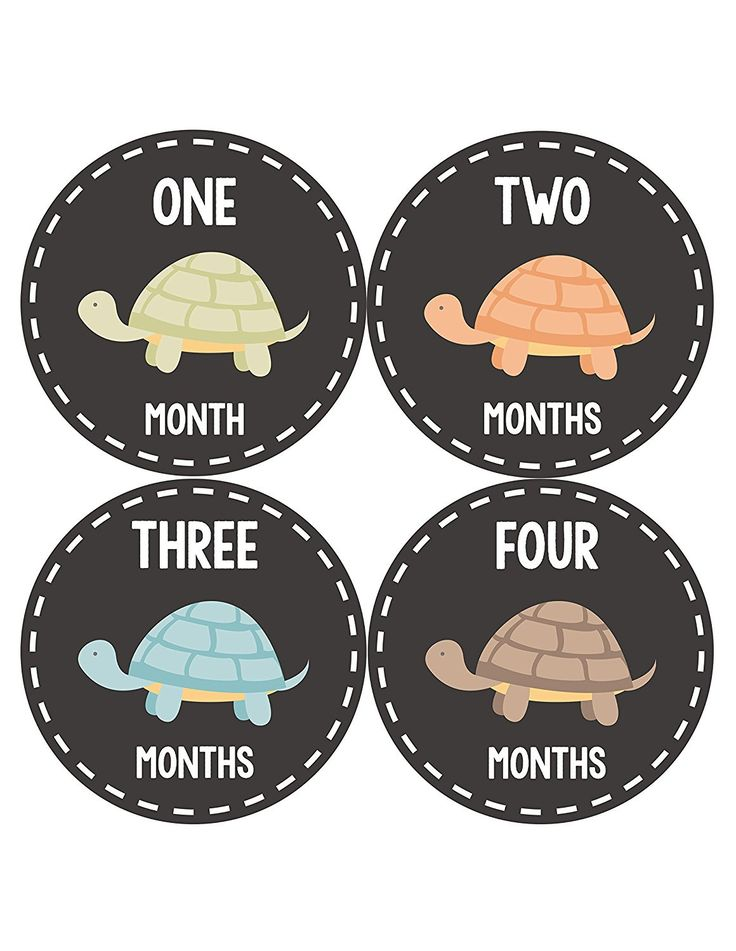 Months In Motion - Baby Month Stickers - Monthly Baby Sticker for Boys or Girls - Turtles (1090)