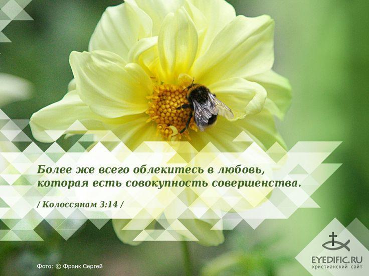 Христианский сайт открытки с цитатами из библии, пожеланиями любви девушке