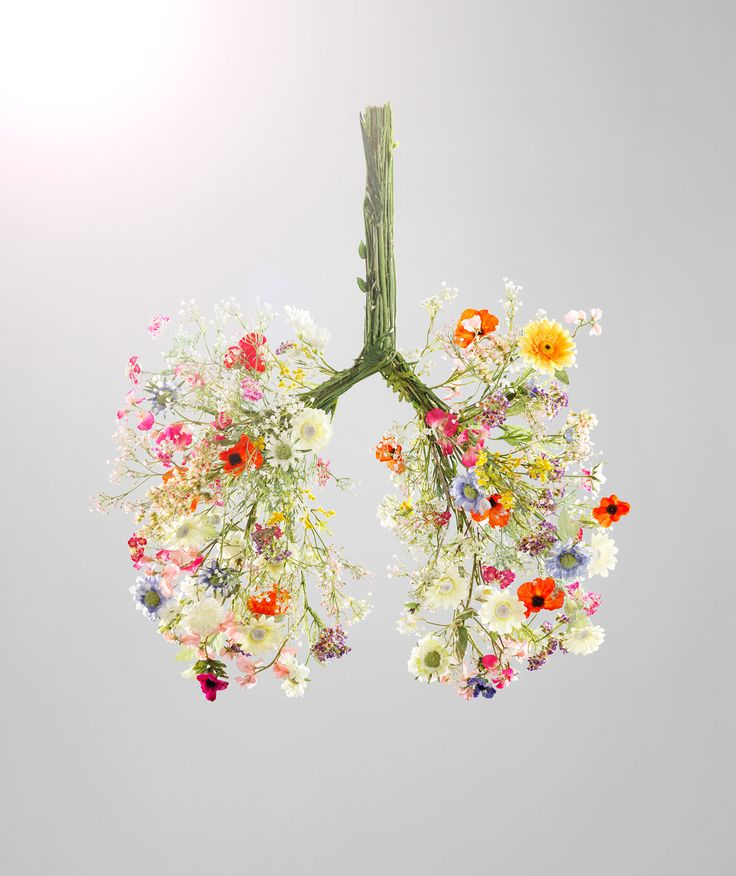 Flower Lungs | Seasons are changing up to three weeks early this year.