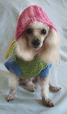 $4.95 - Crochet Dog Clothes Pattern - Dog Raincoat with Hood by OnceUponAPoodle at https://www.etsy.com/listing/55601365/crochet-dog-clothes-pattern-dog-raincoat?ref=v1_other_2