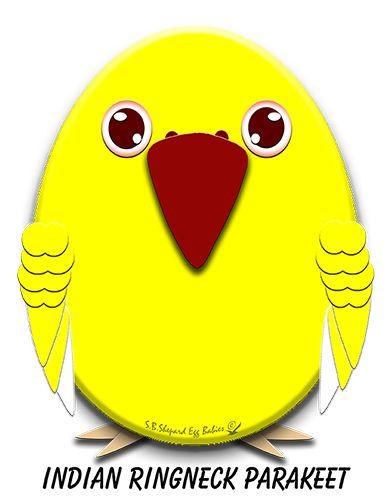 http://www.cafepress.com/birdnerdsdigitaldesign/10461289 #indianringneckparakeet #cafepress #parrots #birdnerds
