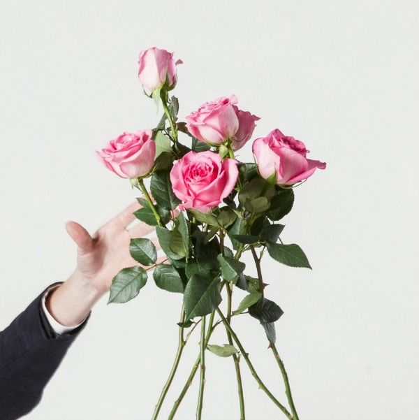 Happy Valentines Day | Pink Roses