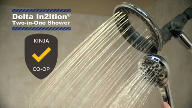 Delta's In2ition Two-In-One line of flexible, practical, feature-rich shower heads rinsed away the competition, taking 35% of the vote and the title of best shower head.