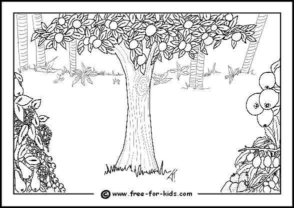 Blank Eden Colouring Page