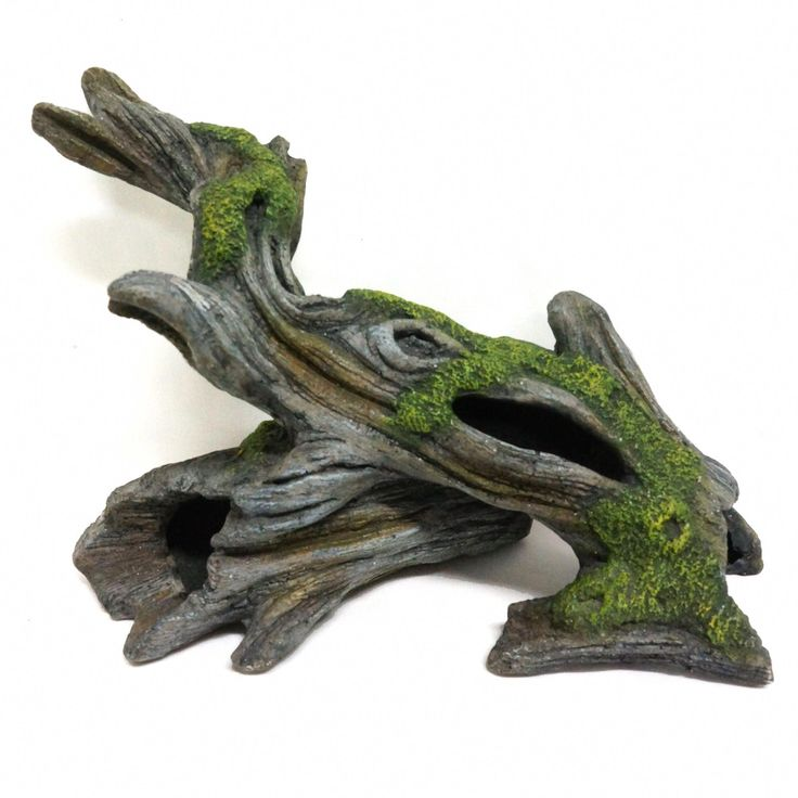 All living things bogwood reptile ornament green
