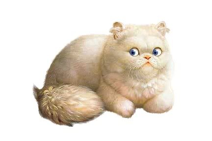 * Gatos Sin Guantes *: Decía un escritor: ¨A los escritores les gustan los gatos por ser criaturas tan tranquilas, queribles y serenamente sabias; y a los gatos les gustan los escritores... por las mismas razones.¨