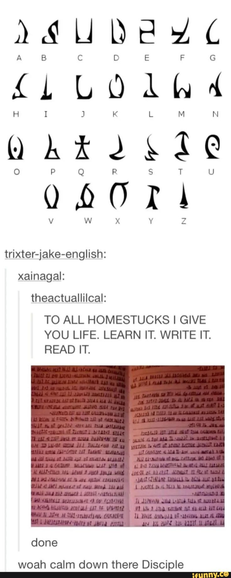"the last line there means ""whoa slow down there student"" I take Latin. that's how I know. I know! I'm such a weirdo! XD << that aint me who wrote this. Disciple is a word most of the latin languages like french will understand, but it is right now a HOMESTCUK POST YEAHHHH"